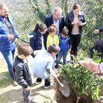SANTA MARTA comemora… Dia Mundial da Árvore
