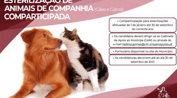 CAMPANHA ESTERILIZAÇÃO DE ANIMAIS DE COMPANHIA 2021 (Cães e Gatos) COMPARTICIPADA